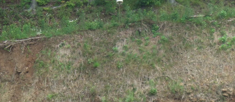 MT NEBO ROAD, OHIO TOWNSHIP – 10 Acres Vacant Land for Sale